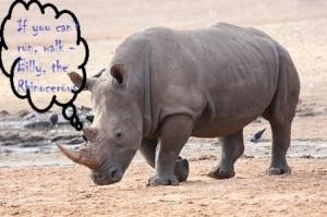Billy - The Rhino